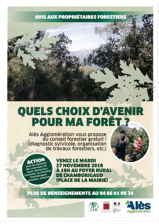 Avis aux propriétaires forestiers
